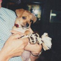 Awhh . . a puppy.